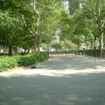 Clear days in Lower Manhattan